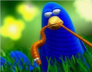 bird_worm