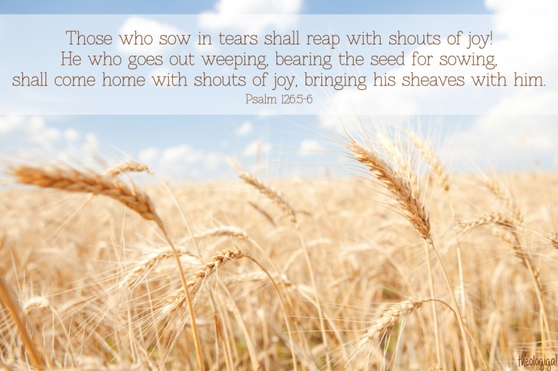 bible-verse-psalm-1265-6-those-who-sow-in-tears-shall-reap-with-shouts-of-joy-2013