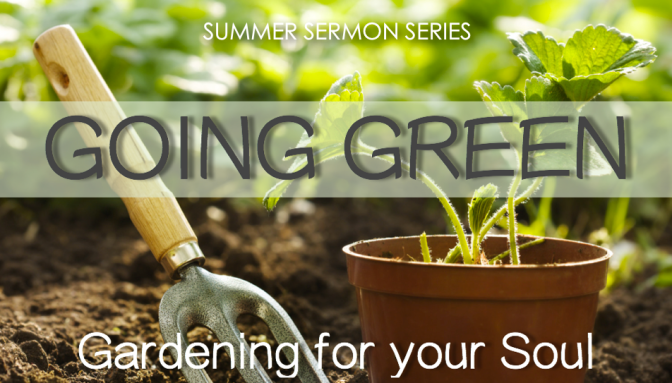 Going Green 1: God Has Green Thumbs